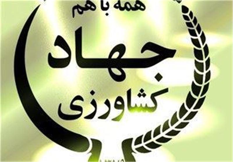 وزارت جهاد کشاورزی برای پرداخت پاداش کارکنان خود ملک می فروشد